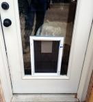 Lewisville Dog door in glass door installation_LD Glass Co_h600